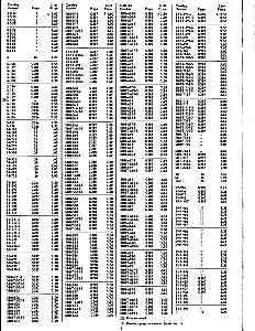 index5.jpg